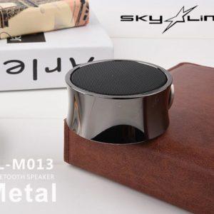 Speaker SL-M013